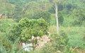 UNSAC – CHANGEMENT CLIMATIQUE : le PNUE soutient que l'environnement est le moteur de la sécurité humaine