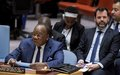 Central Africa: Security Council discussed political and security situation